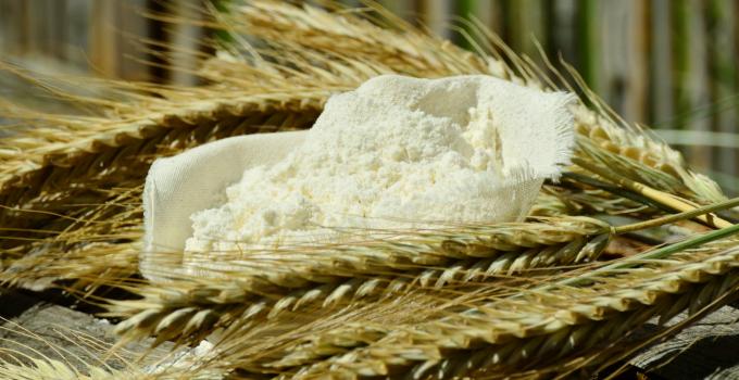 Wheat Flours